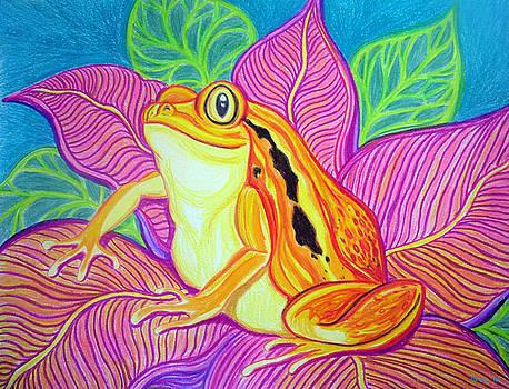 Nick Gustafson - Tomatoe Frog