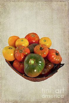 Tomatoes in a Basket Wide by Dan Carmichael
