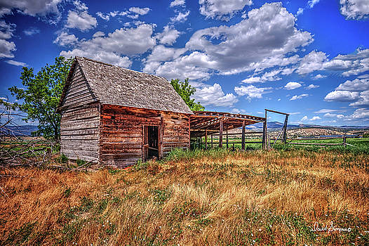 Tool Shed by David Simpson