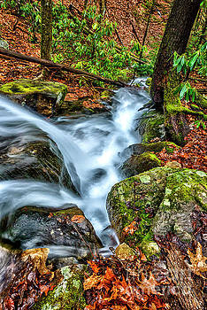 Top of the Waterfall by Thomas R Fletcher