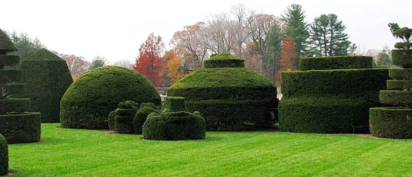 Topiary Garden by Angela Davies
