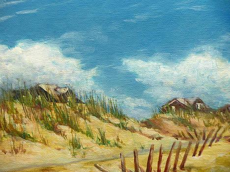 Topsail Island Dunes by Richard Klingbeil