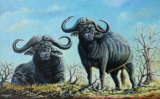 Tough Guys by Anthony Mwangi