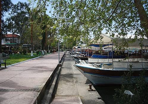 Tracey Harrington-Simpson - Tour Boats Lining Dalyan River