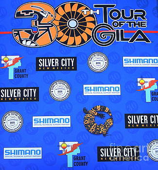 Tour Of The Gila Monster by Natalie Ortiz