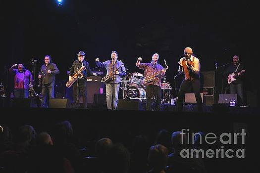 Tower of Power Band Photo by Tower of Power