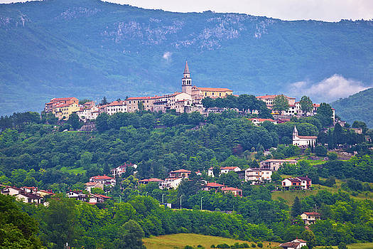 Town of Buzet on green istrian hill by Dalibor Brlek