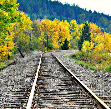 Tracks in Fall  by Mindy Bench