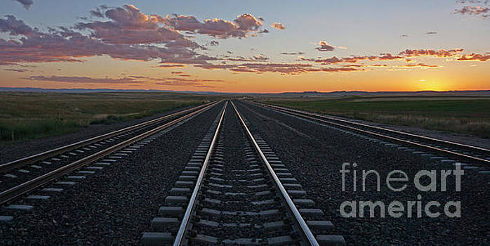 Tracks into Sunset by Bill Gabbert