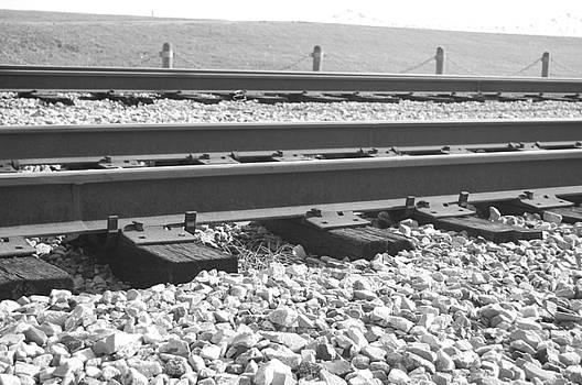 Tracks by Jessa DeNuit