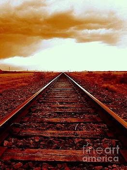 America Southwest Tracks To California by Michael Hoard