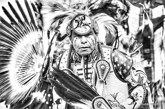 Traditional Dancer  by Clarice Lakota