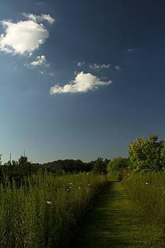 Trail by Amanda Kiplinger