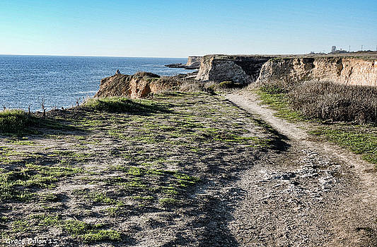 Trail on the Cliffs by Grace Dillon