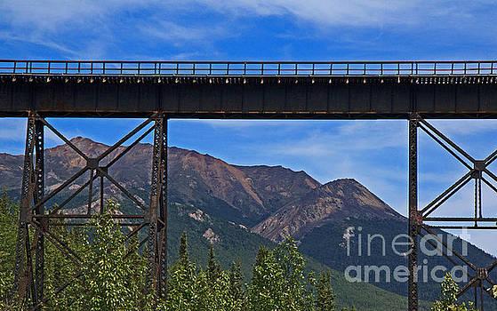 Train Bridge by Robert Pilkington