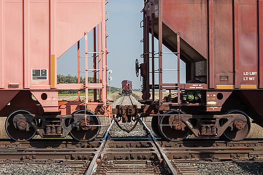 Train Crossing a Track With Another Train Waiting by Steve Boyko