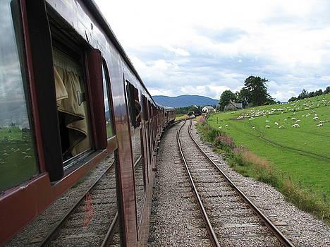 Train ride by Annemeet Hasidi- van der Leij