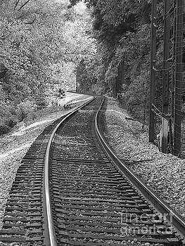 Train Track by Sean Cupp