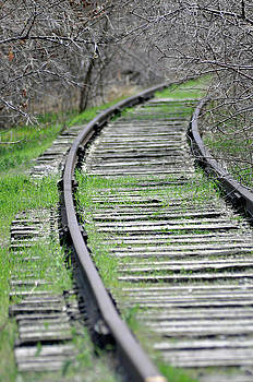 Trainless Track by Juls Adams
