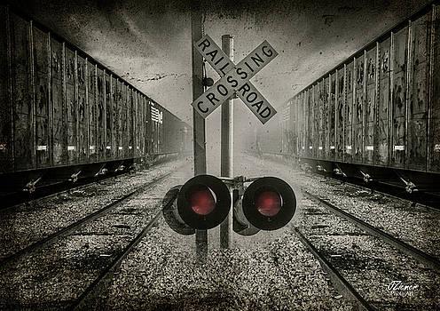 Trains Crossing by Jim Ziemer