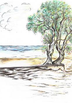 Tranquil- Sandy Beach by Teresa White