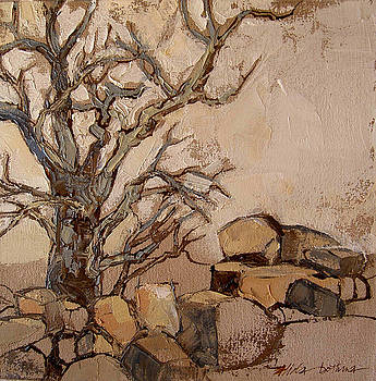 Tree and boulders by Alida Bothma