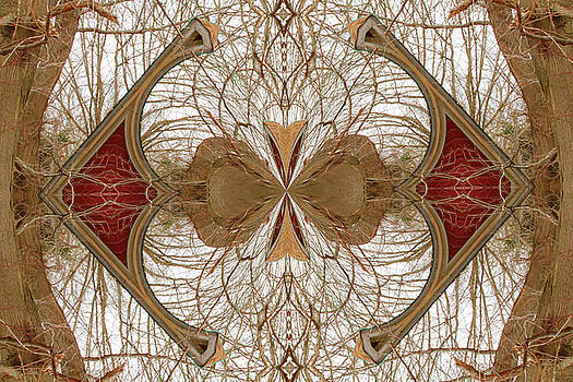 Karol Livote - Tree Design
