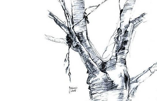 Tree by Foqia Zafar