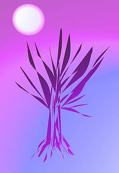 Tree by John Krakora