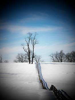 Tree on a Hill by Joyce Kimble Smith