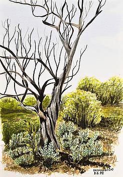 Svetlana Sewell - Tree Painting