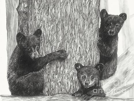 Tree trio  by Meagan  Visser