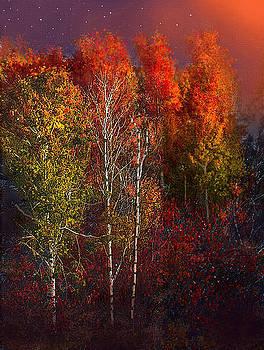 Treeline by Robert Foster