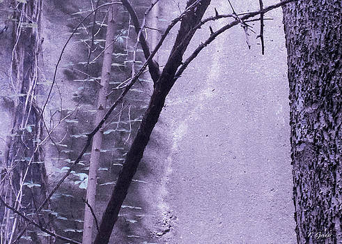 TONY GRIDER - Trees Growing in Silo - Purple Landscape  Edition