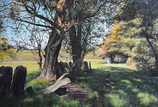Harry Robertson - Trees near Rhug.