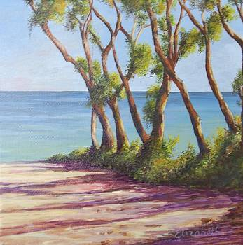 Trees on Beach II by Beth Maddox