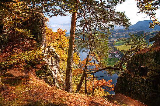 Jenny Rainbow - Trees on the Edge. Saxon Switzerland