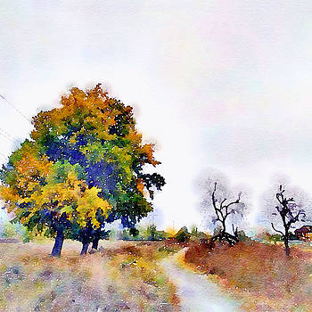 Trees by Tears of Colors Gallery