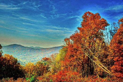 Treetops by Daniel Gundlach