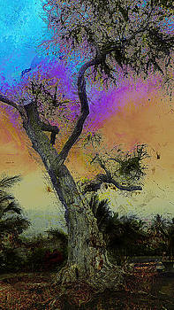 Trembling Tree by Lori Seaman