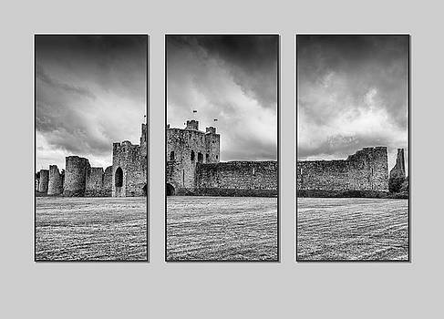 Trim Castle triptych  by Martina Fagan