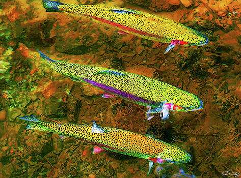 Trio of Rainbow by Dee Browning