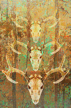 Abstract Triple Deer Antler Forest by Suzanne Powers
