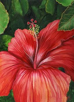 Tropic Fire by Carrie Auwaerter