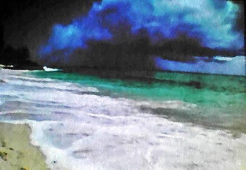 Tropical Beach  by Jacqueline Mason
