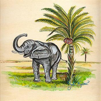 Tropical Elephant by John Keaton