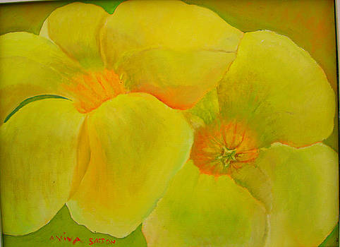 Tropical Geen Yellow  by Aviva D Sasson