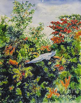 Tropical Heron by Jim Krug