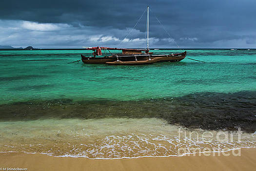 Tropical Illusions by Mitch Shindelbower