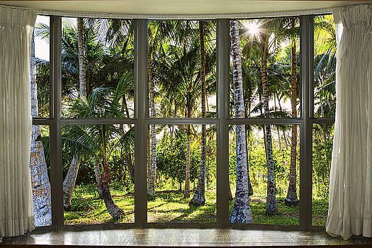 James BO Insogna - Tropical Jungle Reflections Bay Window View
